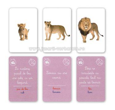 Montessori - familii de animale - imagine produs