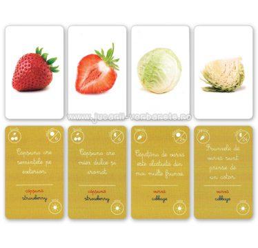 Montessori - legume si fructe 2
