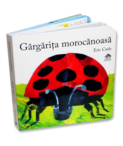 gargarita-morocanoasa