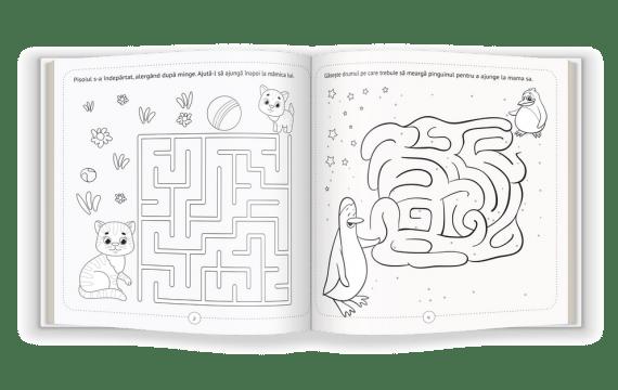 marea_carte_a_labirinturilor