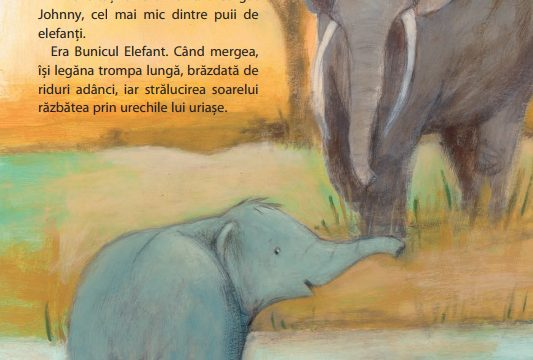 Bunicul-Elefant-isi-ia-ramas-bun-5