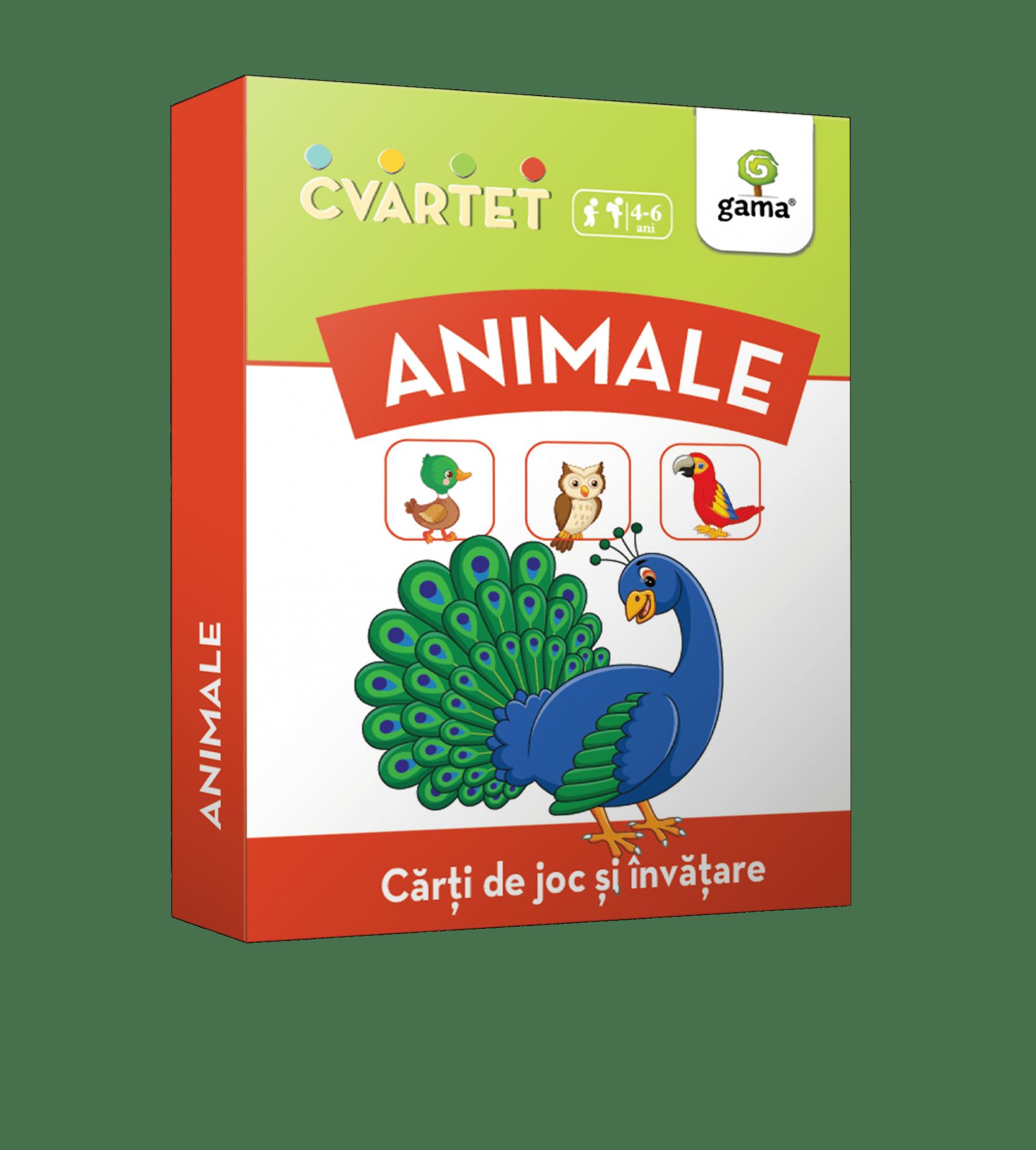 cutie_animale_cvartet