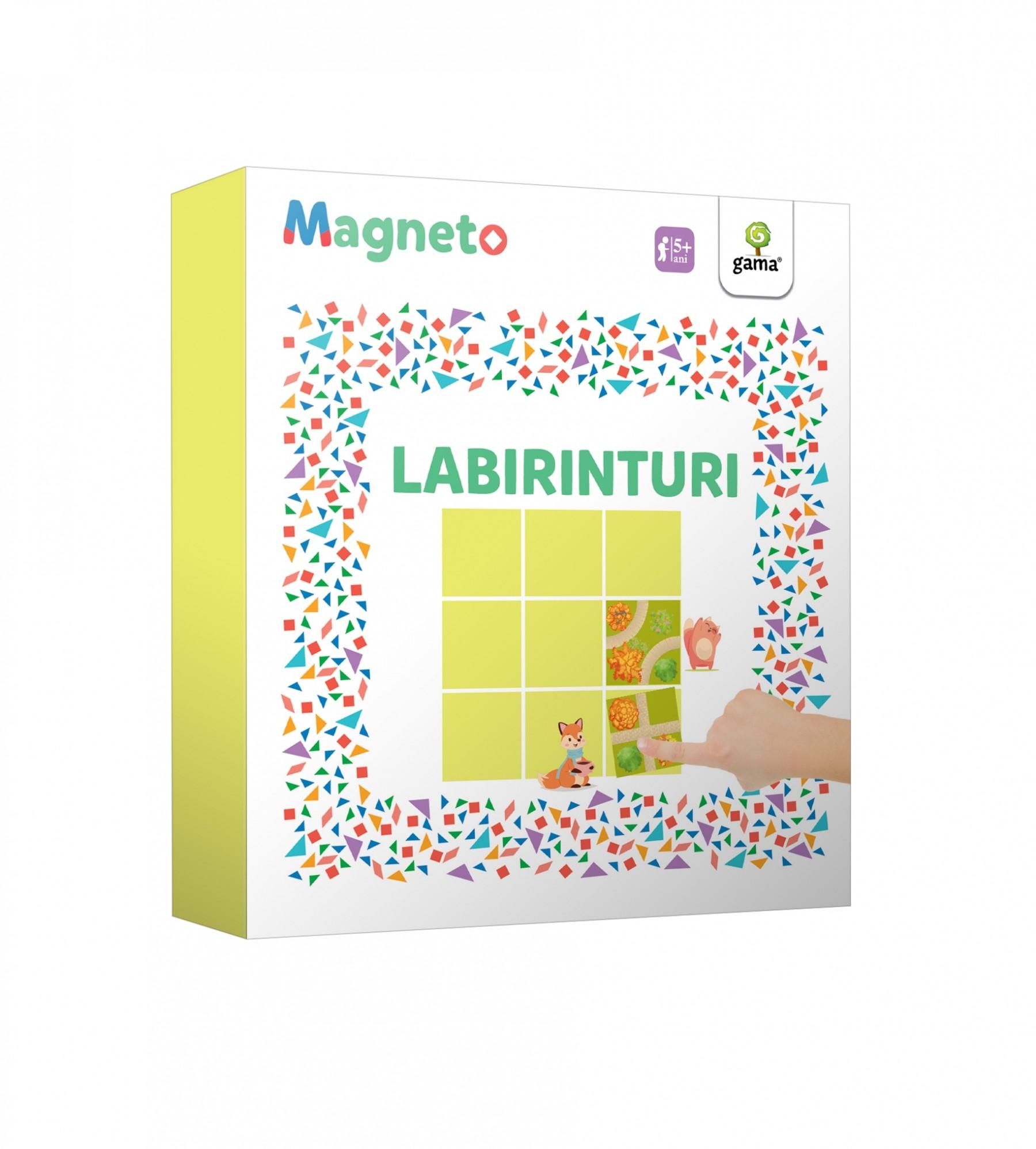 cutie_magneto_labirinturi